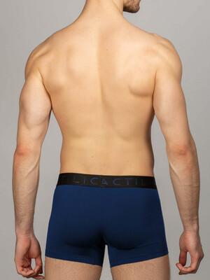 Боксеры синие, фирменная резинка COLOUR