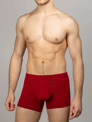 Men's briefs with technology INTEMP maroon